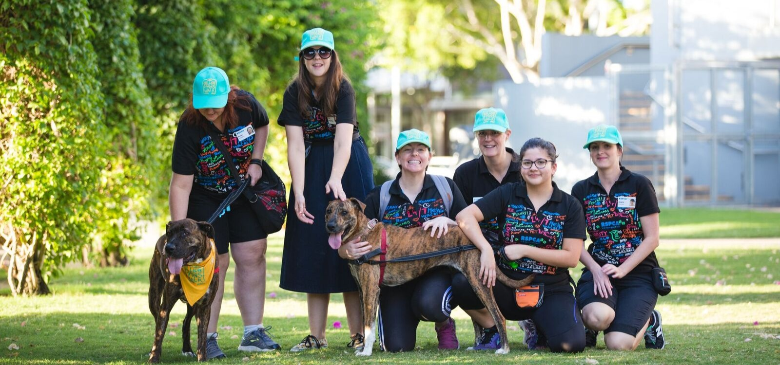 Giving Evie A Second Chance at Life, by RSPCA Qld