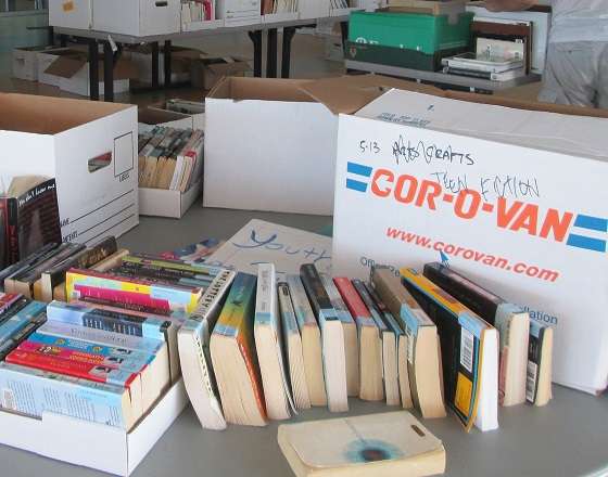 Donated books at Bascom Branch book sale